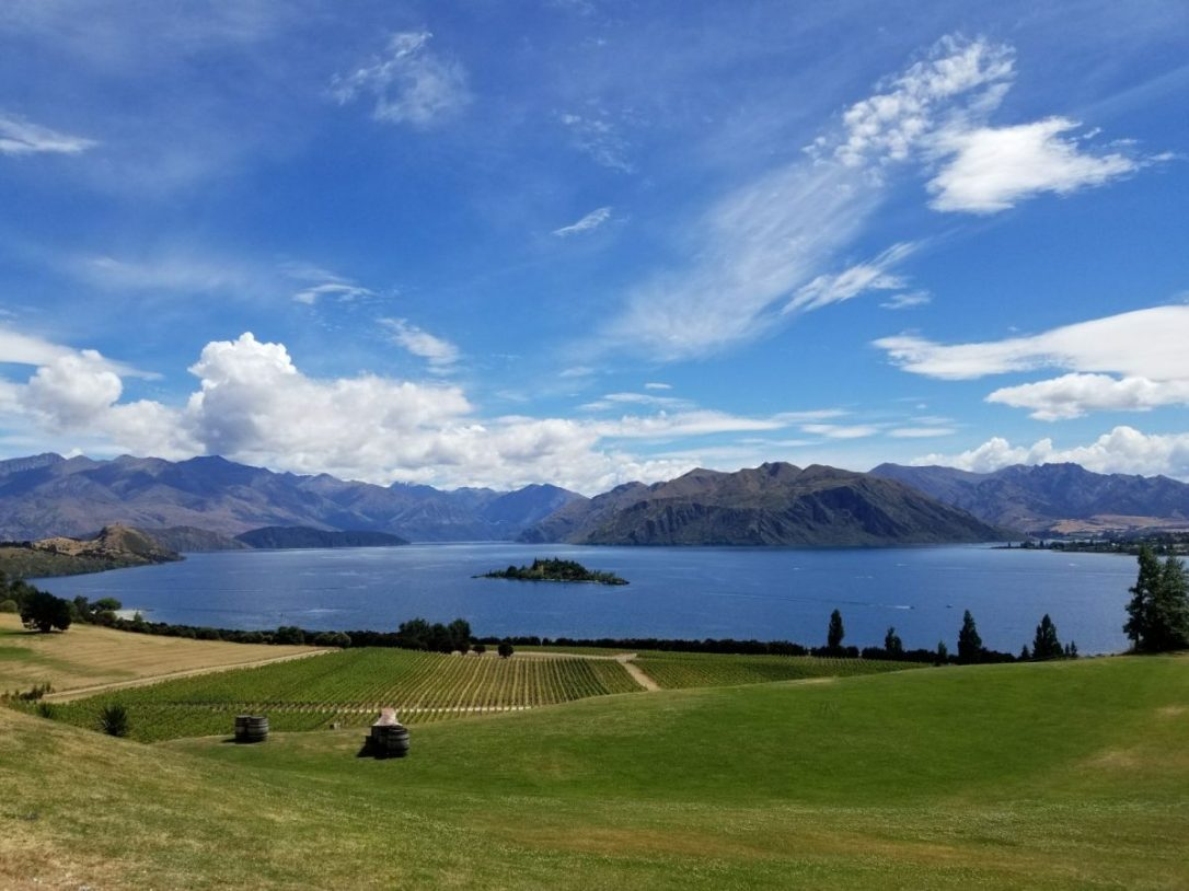 Lac Wanaka Rippon winery